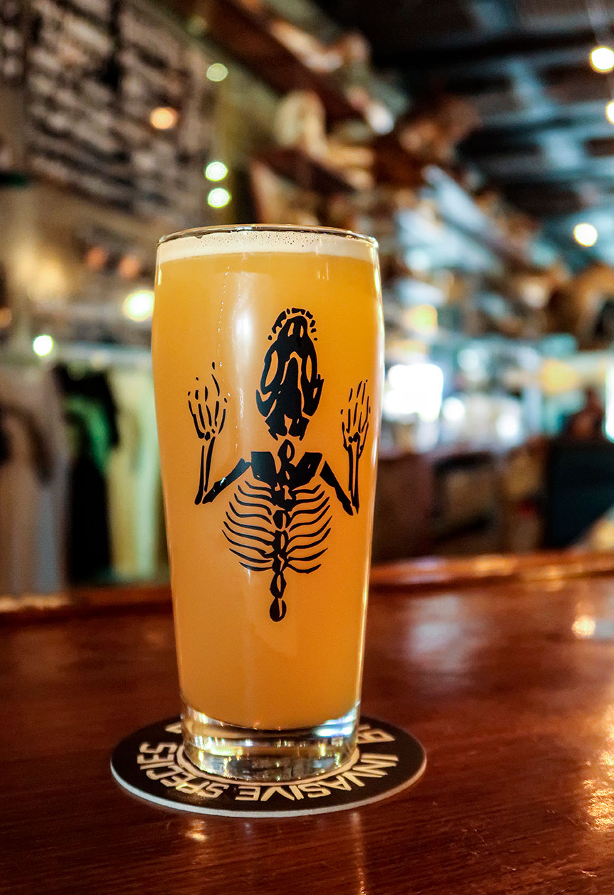 South Florida Breweries